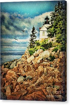Bass Harbor - Acadia Np Canvas Print by Lianne Schneider