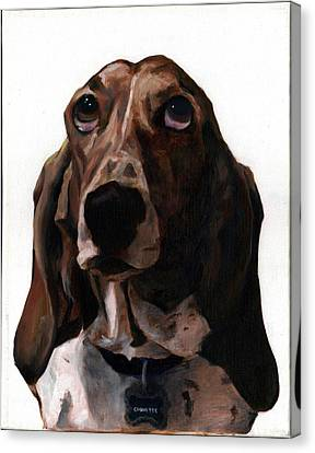 Basset Hound Named Coquette Canvas Print by Thomas Weeks