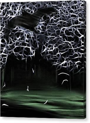 Bat Cave 2 Canvas Print by Steve Ohlsen