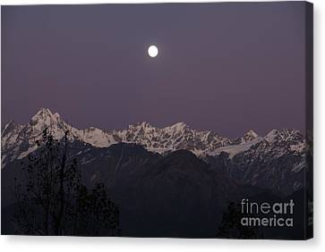Canvas Print featuring the photograph Bathed In Moonlight by Fotosas Photography