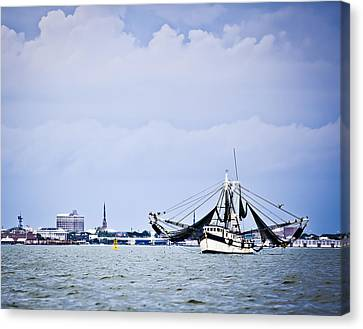Bay Harvest Canvas Print by Donni Mac