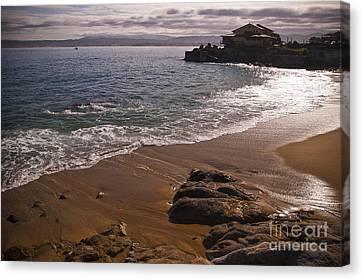 Beach At Monteray Bay Canvas Print by Darcy Michaelchuk