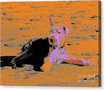 Beach Dog 8 Canvas Print by Nina Kaye