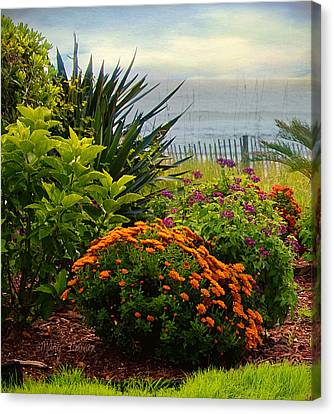 Canvas Print featuring the photograph Beach Garden by Mary Timman