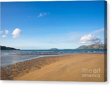 Beach Ireland Canvas Print by Andrew  Michael