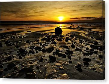 Beach Morning Glory Canvas Print by Svetlana Sewell