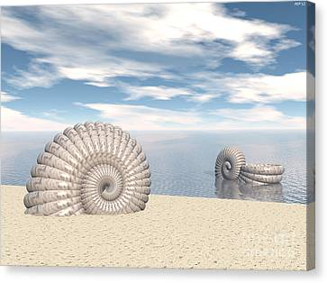 Canvas Print featuring the digital art Beach Of Shells by Phil Perkins