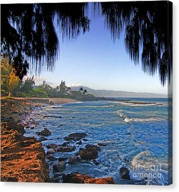 Beach On North Shore Of Oahu Canvas Print