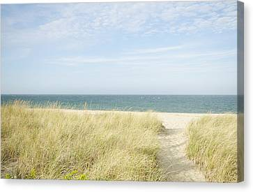 Beach Path, Nantucket Canvas Print by Blue Line Pictures