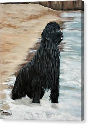 Beach Patrol Canvas Print by Sharon Nummer