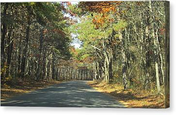 Beach Road Canvas Print