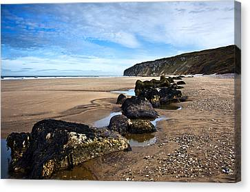Beach Stones Canvas Print by Svetlana Sewell