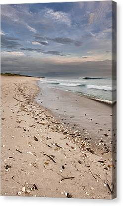 Beach Sunrise Canvas Print by Cheryl Davis