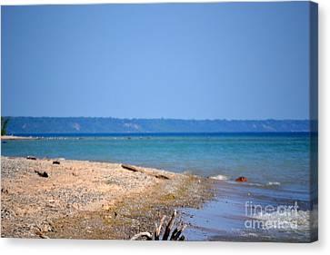 Beach Views Canvas Print by Dyana Rzentkowski