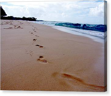 Beaches 04 Canvas Print by Earl Bowser