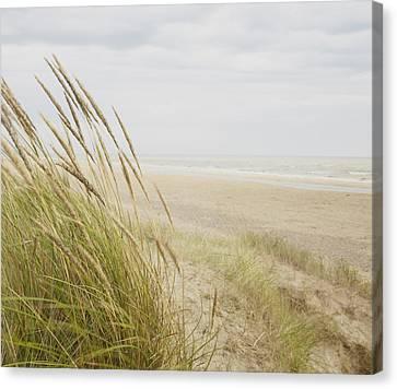 Beachscape 8 Canvas Print by Ben Richardson