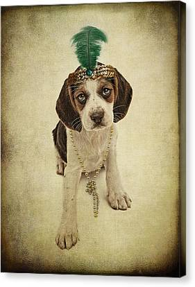 Beagle Puppy Flapper  Canvas Print by Susan Schmitz