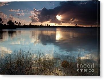 Everglades National Park Canvas Print - Beams Of Light by Keith Kapple