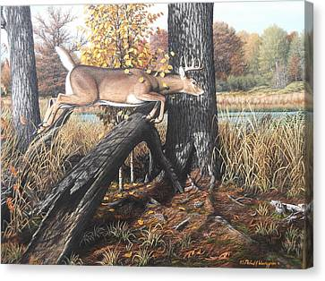 Beans Eddie Buck Canvas Print by Michael Wawrzyniec