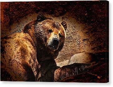 Bear Artistic Canvas Print by Karol Livote