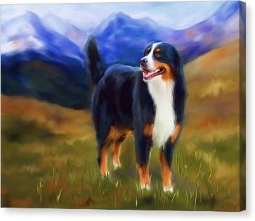 Bear - Bernese Mountain Dog Canvas Print by Michelle Wrighton