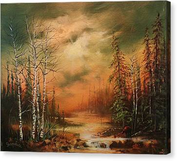 Bear Creek Canvas Print by Tom Shropshire