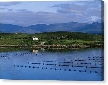 Beara, Co Cork, Ireland Mussel Farm Canvas Print by The Irish Image Collection