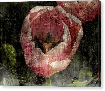 Beautiful Decay Canvas Print by Bonnie Bruno