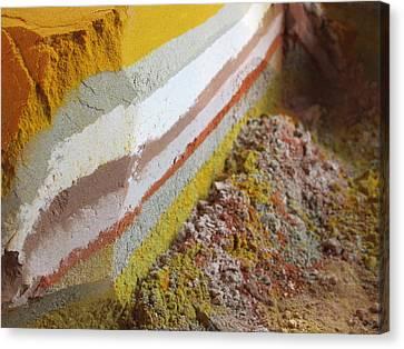 Beautiful Flavors Canvas Print by Tia Anderson-Esguerra