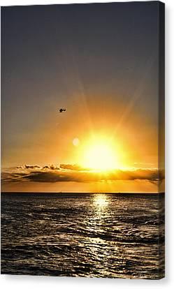 Beautiful Flight Canvas Print