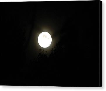Canvas Print featuring the photograph Beautiful Full Moon by Ester  Rogers