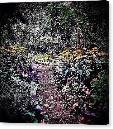 Beautiful Garden Path - New York City Canvas Print by Vivienne Gucwa