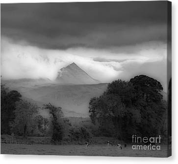 Beautiful Killarney Mountains Ireland Black And White Canvas Print