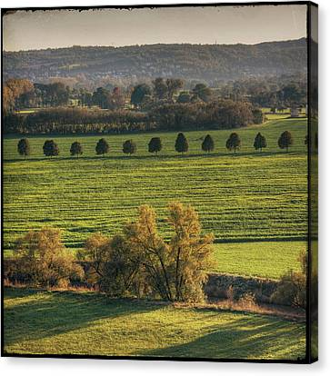Beautiful Landscape With Trees And Field Canvas Print by Fsn