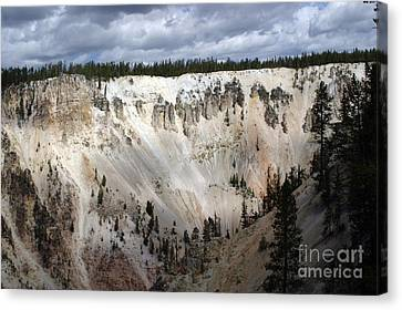 Beautiful Lighting On The Grand Canyon In Yellowstone Canvas Print by Living Color Photography Lorraine Lynch