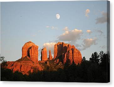 Beautiful Photography - Sedona Landscape Canvas Print by Earl Bowser
