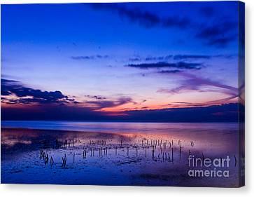 Beautiful Sea In Twilight Canvas Print by Mongkol Chakritthakool