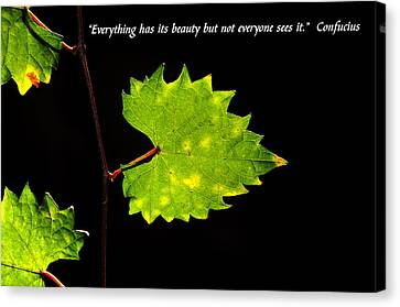 Beauty And Confucius Canvas Print by David Lee Thompson