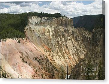 Beauty Of The Grand Canyon In Yellowstone Canvas Print by Living Color Photography Lorraine Lynch