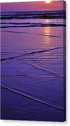 Beauty Of The Moment Canvas Print by Valerie Garner