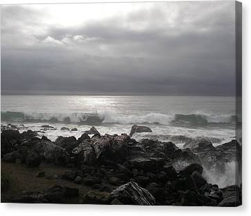 Canvas Print featuring the photograph Beauty Of The Storm by Cheryl Perin