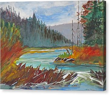 Beaver Dam Canvas Print