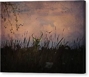 Bedding Down For Evening Canvas Print by Lianne Schneider