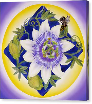 Bee And Passion Flower Canvas Print by Marcia  Perry