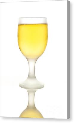 Stemware Canvas Print - Beer by HD Connelly
