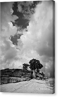 Before The Storm 2 Canvas Print
