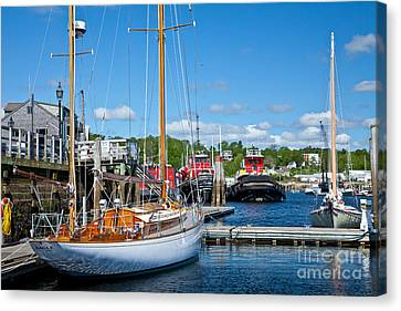 Belfast Harbor Canvas Print by Susan Cole Kelly