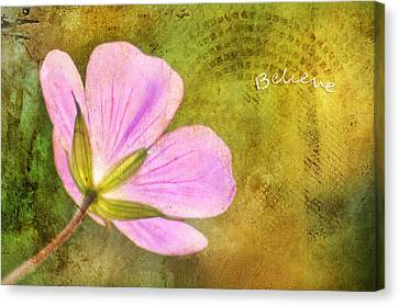 Believe Canvas Print by Darren Fisher