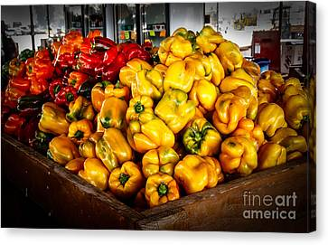 Bell Peppers Canvas Print by Robert Bales