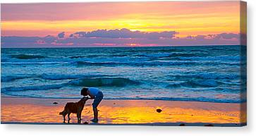 Canvas Print featuring the photograph Bella At Sunrise by Alice Gipson